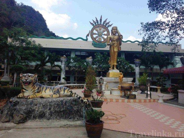 Hram tigra hram tigrinoy peschery krabi thailand (5)