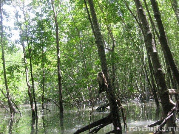 Visit krabi Thailand Ao Nang Province Krabi (3)