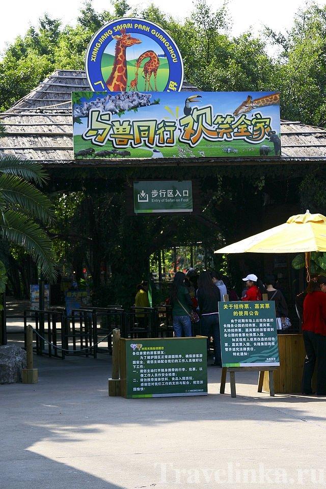 гуанчжоу достопримечательности зоопарк (6)