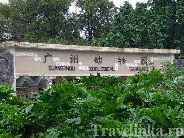гуанчжоу достопримечательности зоопарк (7)