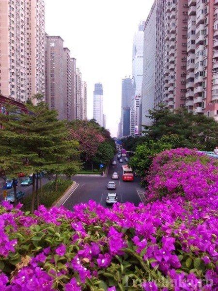 гуанчжоу китай достопримечательности,  выставка в гуанчжоу (21)