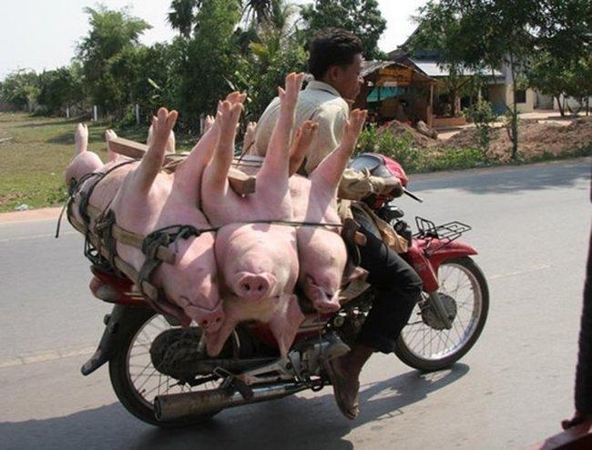 Особенности менталитета вьетнамцев