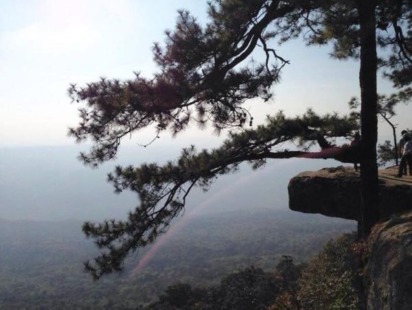 chiang mai park (1)