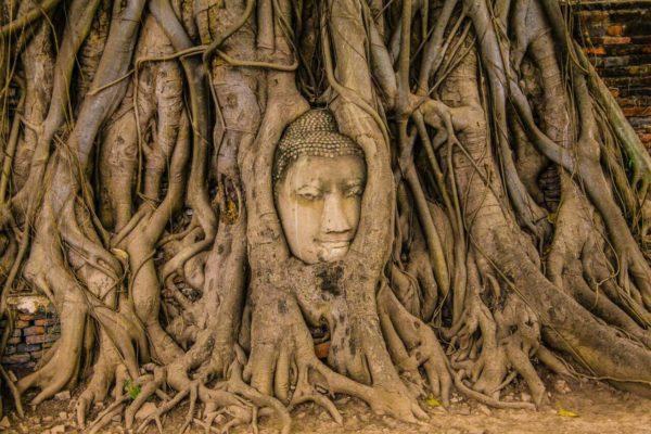 Бангкок - Аюттхая: как добраться