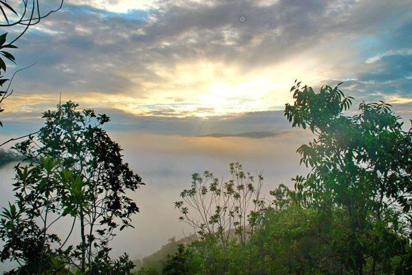 Борнео: остров мечты в Малайзии