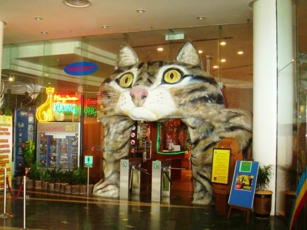 Музей кошек в Борнео Малайзия