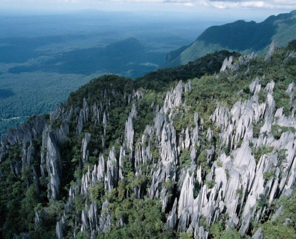Национальный парк Мулу в Малайзии на острове Борнео