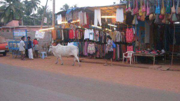 Агуада Гоа: покупки