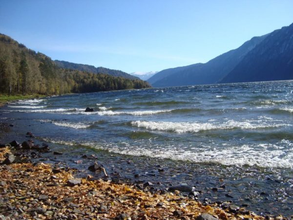 Телецкое озеро отдых летом