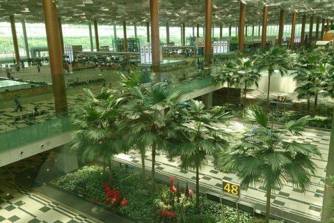 Гид по аэропорту Чанги в Сингапуре