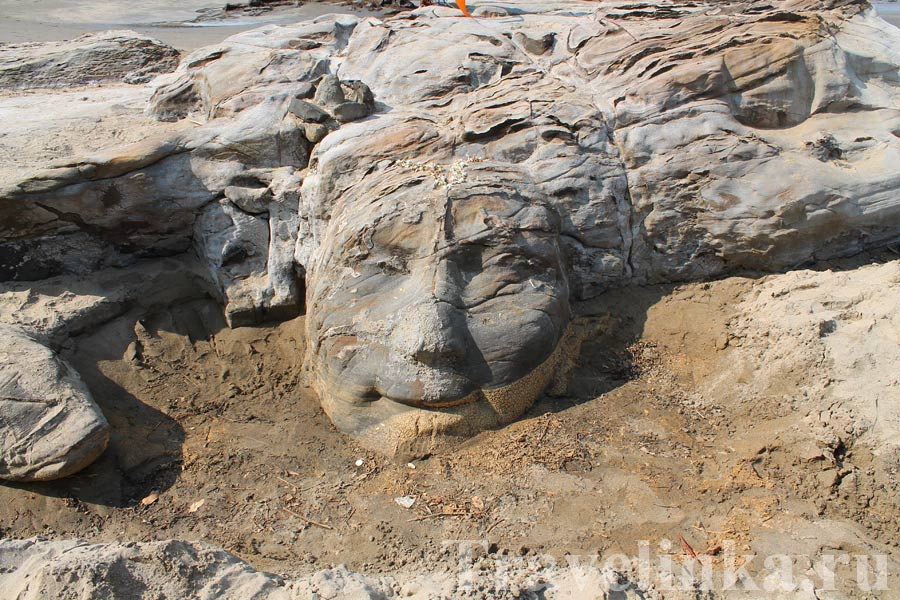 Лицо Шивы Чапора в Гоа