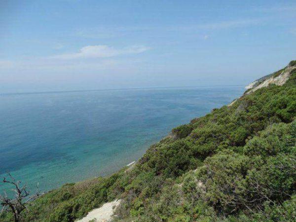 Отдых в Варваровке (Анапа) на Черном море