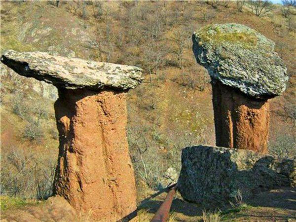 каменные грибы сатера