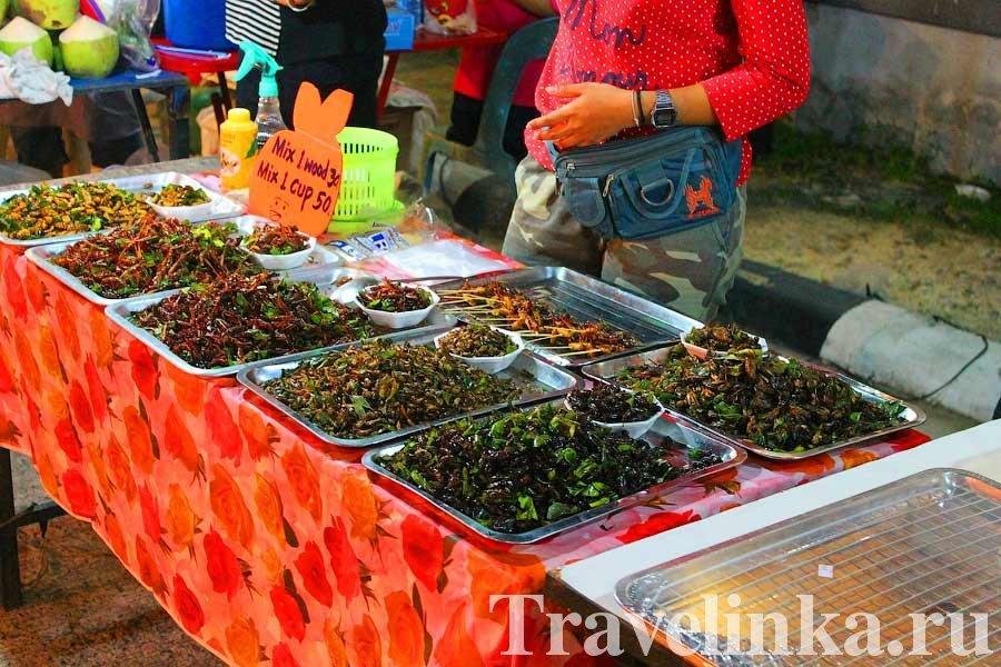 жуки Таиланда