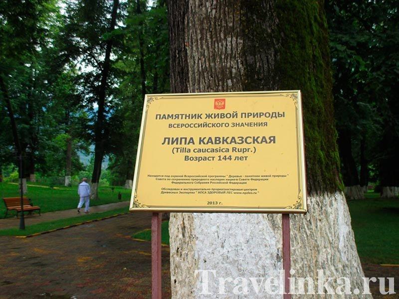 Памятник живой природы
