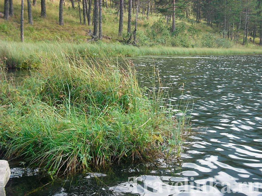 Озеро Хурлакель