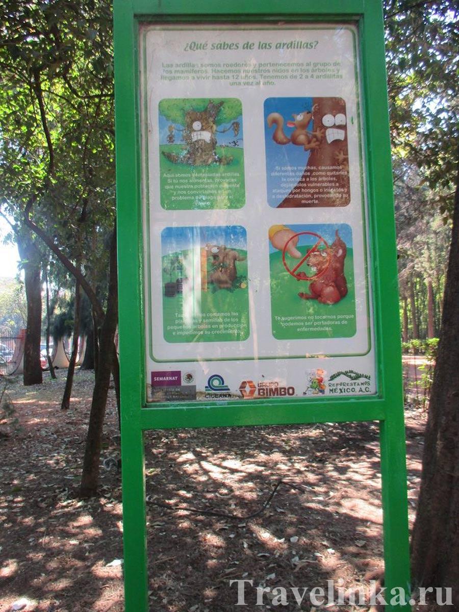 Парк Койоакан Мехико