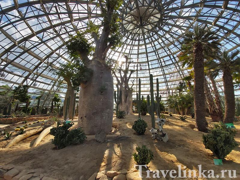 Оранжереи в парке Винперл Нячанг