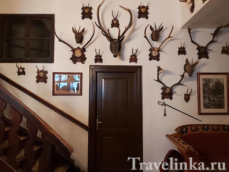 Чешский Штернберг, охотничий зал