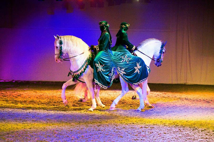 Цирк «Al Saheel»