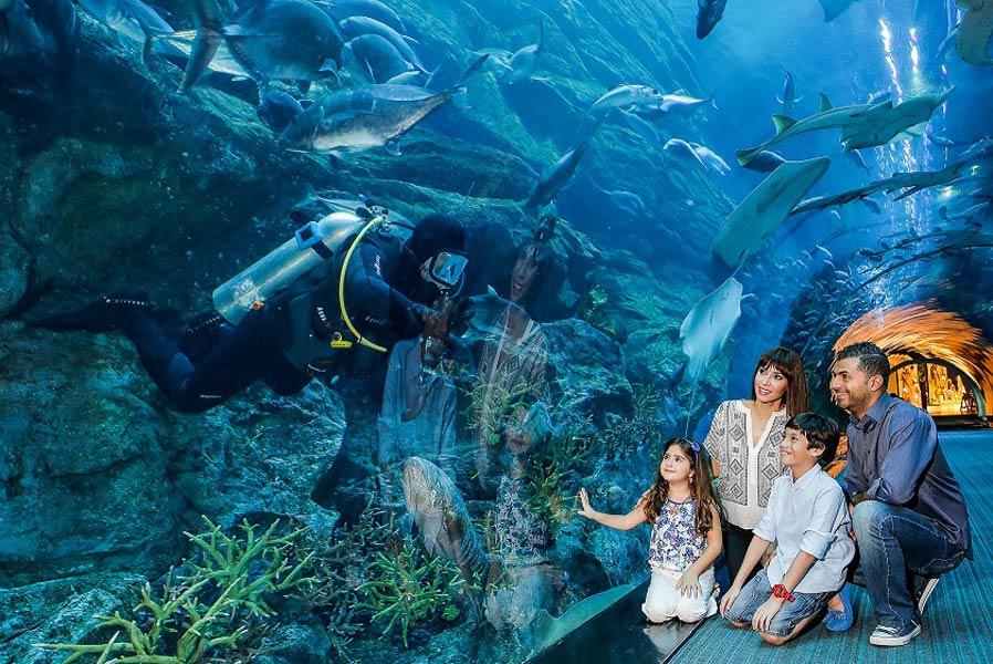 Аквариум и подводный зоопарк в «Дубай Молл»