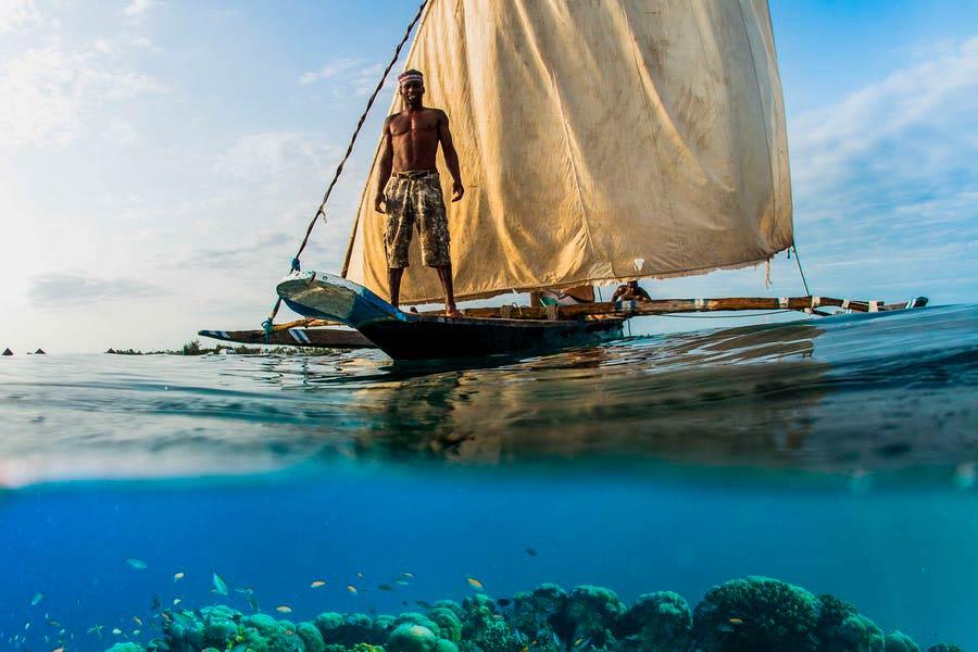 Морское сафари